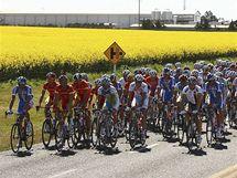 Balík jezdců při závodě jednotlivců na mistrovství světa v cyklistice v Austrálii.