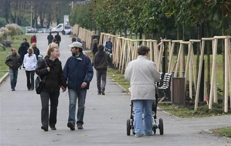 Necelá stovka dobrovolníků, především partnerských dvojic a rodičů s dětmi, zasadila v olomouckých Smetanových sadech další část obnovované Rudolfovy aleje.