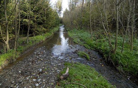 Cesta vedoucí korytem Libeňského potoka
