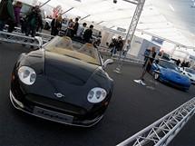 Autoshow 2010.