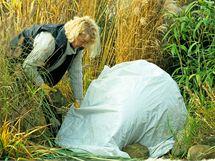 Choulostivé traviny svažte a zakryjte