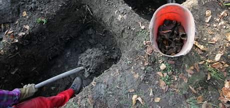 Na hradě Skály stále ještě bádají archeologové.