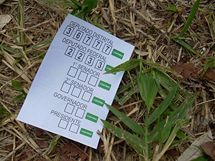 Hlasovací lístek brazilských megavoleb 2010 (3. října 2010)