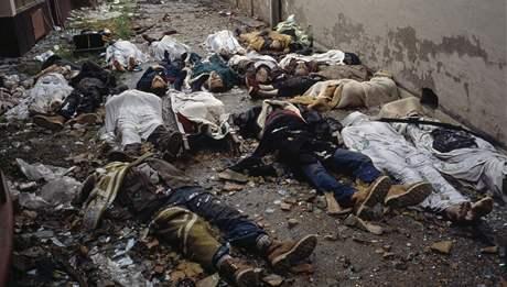 Povraždění Chorvaté ve Vukovaru (1991)