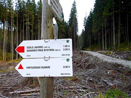 Sedlo Javorie 1:00 h, směr vlevo neplatí, zde pokračujeme lesní cestou