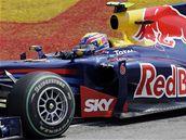 DETAIL. Mark Webber z Red Bullu během Velké ceny Brazílie.