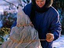 Stromky v kontejnerech před mrazem ochrání i obalení netkanou textilií