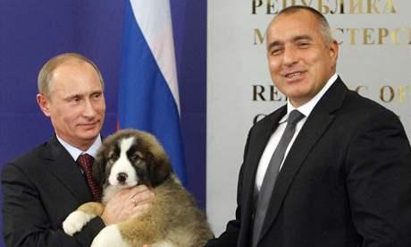 Ruský premiér Vladimir Putin hýčká štěně, které dostal os svého bulharského kolegy Bojka Borisova (13. listopadu 2010)