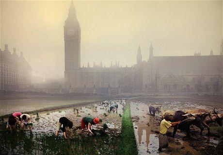 Londýnské muzeum. Smog a rýžová pole v Londýně