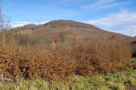 Holý kopec od jihozápadu