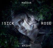 Načeva & Wright: The Sick Rose