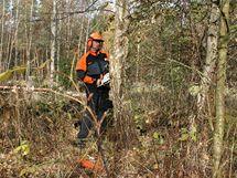 Kmen zbavte překážejících větví, pomozte si sekyrou
