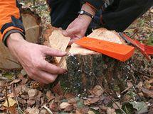 Výška klínu by měla činit dvě třetiny hloubky káceného stromu