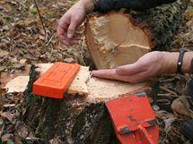 Druhou polovinu hlavního řezu veďte zhruba centimetr pod první částí řezu tak, abyste si neřízli do klínku; opět nechte nedořez. Pokud strom nezačne padat sám, pomozte si kácecí lopatkou
