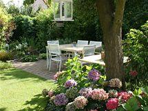 Obývák v zahradě, ve stínu stromů a společnosti keřů hortenzií