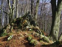 Hřebenové partie Holého kopce