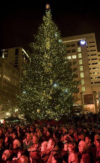 Vánoční strom na náměstí Pioneer Courthouse v Portlandu, kde chtěl útočit mladý radikál Mohamed Osman Mohamud (26. listopadu 2010)