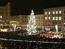 Na brněnském náměstí Svobody se rozsvítil vánoční strom.