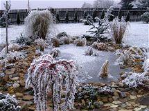 V některé zimní dny si krása zahrady nezadá se svou letní podobou