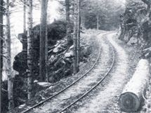 Lichtenštejnové vybudovali v jesenckých lesích drážky pro svážení dřeva. Ta nejdelší v Branné měřila 21 kilometrů.