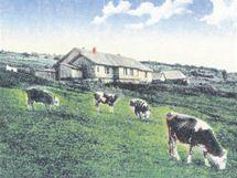V místech horské chaty Švýcárna stála už od roku 1829 salaš, kterou nechali postavit Lichtenštejnové. Turistům začala sloužit, když se pastevectví přestalo vyplácet.