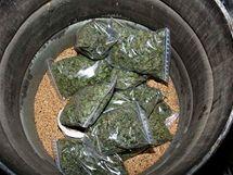 Policisté na Brněnsku zabavili 3 kila marihuany.
