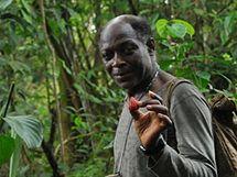 Stopař Thomas po cestě pralesem za gorilami, Kamerun.