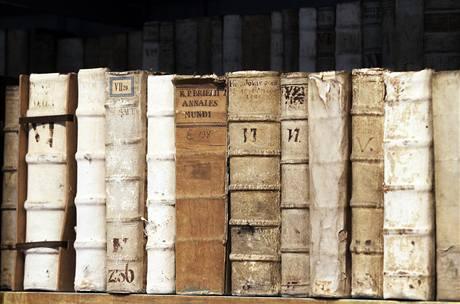 Do sálu smí omezený počet návštěvníků, poškodili by knihy.