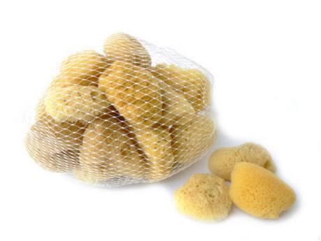Anetashop.cz - Silk kosmetická houba