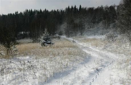 Zima ve vojenském prostoru Libavá.
