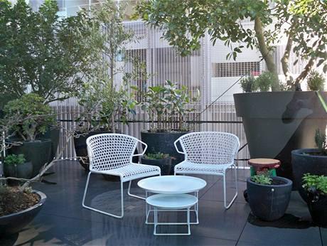 Na střešní terase pěstuje Sue řadu bylinek, především pak oblíbený bobkový list, v obřím květináči fíkovník, levanduli, citrónovník, ale i rajčata nebo ředkvičky