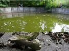 Jímka, kde byly nalezeny ostatky zabitých psů