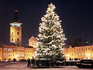 Vánoční strom v Českých Budějovicích.