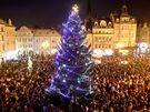 Vánoční strom v Liberci.