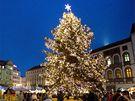 Vánoční strom v Olomouci.
