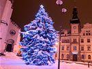 Vánoční strom v Kladně.
