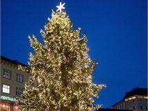 Vánoční strom na Horním náměstí v centru Olomouce.