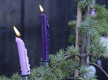 Vánoční dekor: fialová je stále trendy