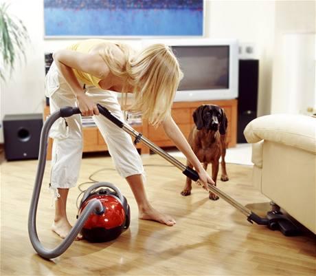 Majitelé domácích mazlíčků ví o úklidu své. I přes časté luxování je boj s chlupy nekonečný.