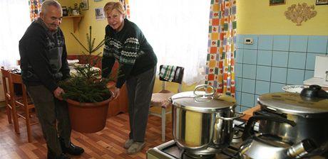 Manželé Pavlíčkovi z vyplavených Heřmanic ozdobí stromek v květináči.