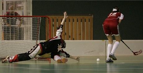 Florbalová brankářka extraligové Olomouce v zápase s Trutnovem.