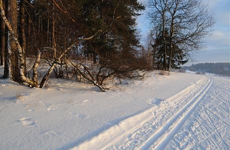 Na kraji lesa pod Javorovou skálou