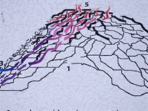Schéma puklin na Borči