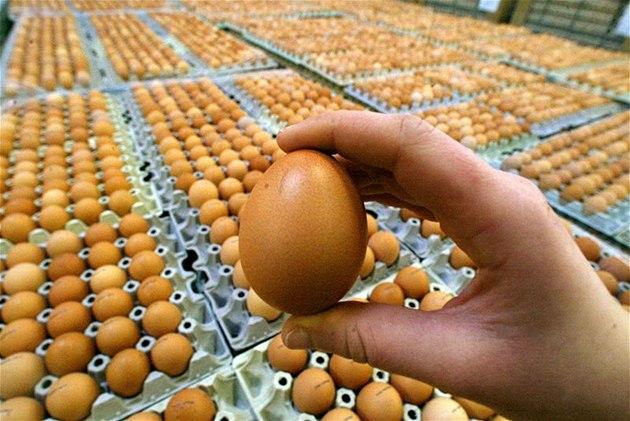 N�mecké ú�ady nechaly preventivn� uzav�ít p�es 100 em�d�lských podnik� v zemi a utratit n�kolik tisíc slepic kv�li výskytu rakovinotvorného dioxinu ve vejcích.
