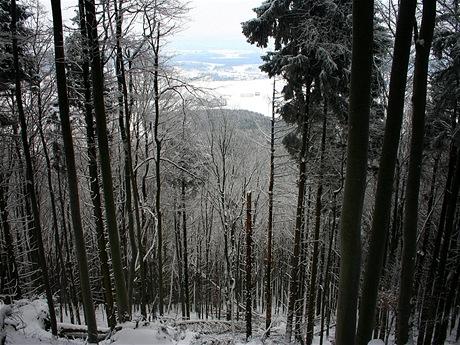 Pohled od okraje zlomu do Lanškrounské kotliny