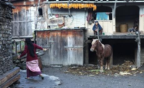 Nepál. V mnoha vesnicích to stále vypadá jako ve středověku