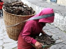 Nepál. Horalé netopí dřevem ani uhlím, ale kravinci