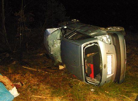 Řidič narazil s autem do stromu u Českých Velenic. Rychlá jízda na náledí se mu stala osudnou.