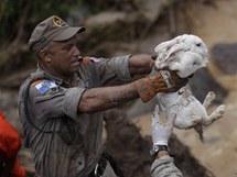 Brazilští policisté zachraňují z rozbouřené vody králíčky (14. ledna 2011)