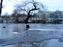 Rozvodněná Ohře v Sokolově (15.1. 2011)